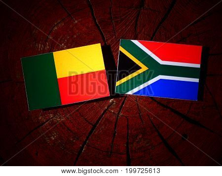 Benin Flag With South African Flag On A Tree Stump Isolated