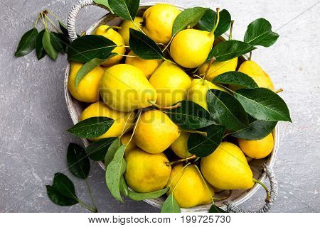 Yellow Pear In Grey Basket In Grey Background. Harvest. Top View. Full Box Of Pears.