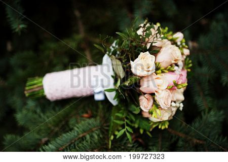 Close-up Photo Of A Bouquet Made Of Roses Laying On The Fir Tree.