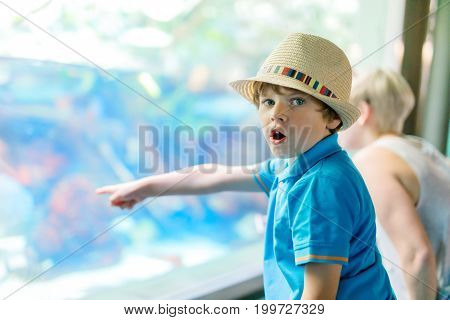 Little kid boy admire different reptiles and fishes in aquarium through the glass in zoo.