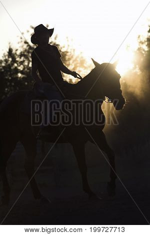 Silhouette of a woman riding a horse - sunset or sunrise, telephoto