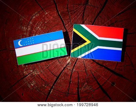 Uzbekistan Flag With South African Flag On A Tree Stump Isolated