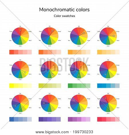 vector illustration of color circle, infographics, palette, monochromatic color swatches