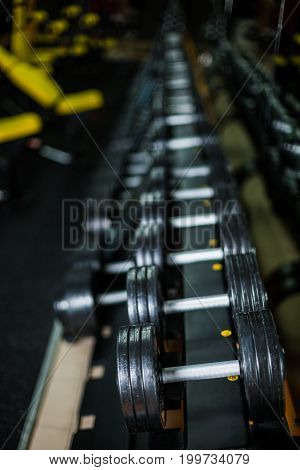 A set of dumbbells, generally used in workouts by wrestlers, bodybuilders, sports players, and others wishing to increase strength and muscle size on a dark blurred background.