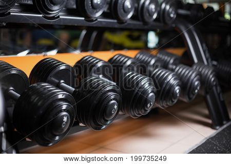 A beautiful, shiny set of black, metal, chrome, heavy barbells on shells on a blurred gym background. Heavyweight dumbbells for professional bodybuilder workout and fitness trainings.