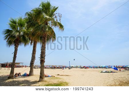 SALOU, SPAIN - AUGUST 3, 2017: People relaxing under some palm trees in the Llevant Beach, far from the crowd in the seashore. Salou is a major destination for sun and beach for European tourism