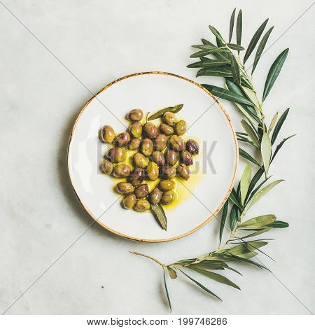 Pickled green Mediterranean olives in virgin olive oil on white ceramic plate and olive tree branch over grey marble background, top view, square crop
