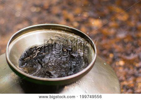 Slash of water in a pot in the rain