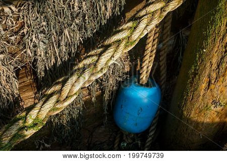 Buoy Hanging Off A Pier