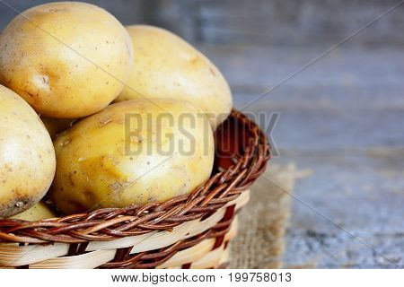 Fresh new potatoes. Raw new potato in a wicker basket on a vintage wooden table. Closeup
