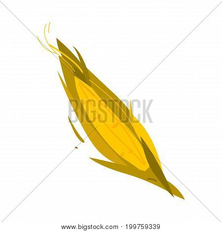 Cartoon, flat style corn cob, ear with leaves, vector illustration isolated on white background. Simple cartoon style cob, ear of corn crop, fall, autumn harvest symbol