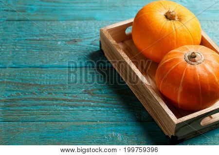 Two pumpkins in wooden box on blue table