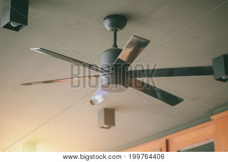 ceiling fan inerior electronic hot day cooling