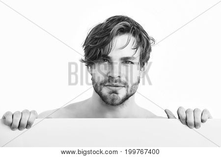 Bearded Man, Caucasian Sexy Amused Macho