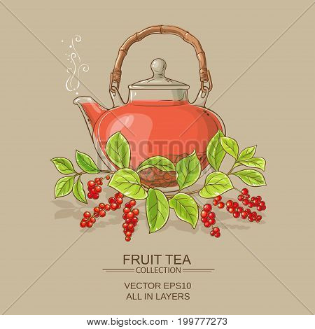 schisandra tea in teapot on color background
