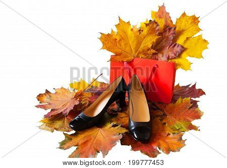 Women's shoes and shopping bag on colorful autumn leaves isolated on white background. Autumn shoes sales concept