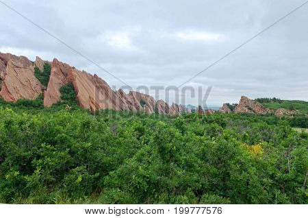 valley woodland and red sandstone rock formations at roxborough state park