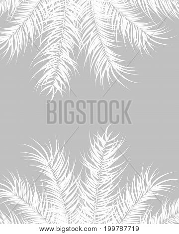 Tropical design with white palm leaves and plants on gray background vector illustration