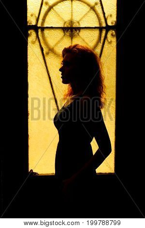 Dramatic portrait of a charming woman in the dark. Dreamy female look in twilight. Female silhouette in the shadows. Young beautiful red-haired girl with a pretty face and beautiful eyes.