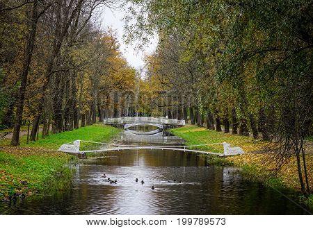 Autumn Scenery In Saint Petersburg, Russia