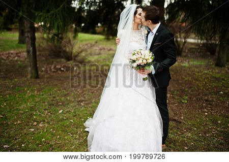 Amazing Wedding Couple Kissing In The Park On A Cloude Autumn Day.