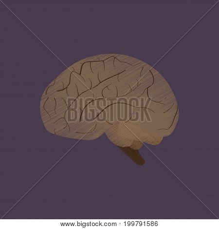 flat shading style icon brain anatomical human