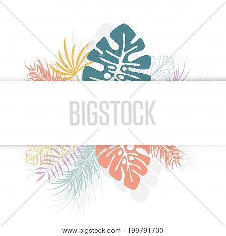 Tropical design with colorful palm leaves and plants on white background with place for text vector illustration