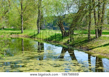 ZDRAVNEVO BELARUS - MAY 18 2017: Pond on territory of museum-estate of great russian painter I.E. Repin