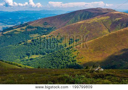 Borzhava Ridge In Carpathian Mountains In August