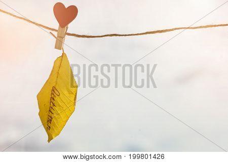 Autumn Leaf With The Inscription