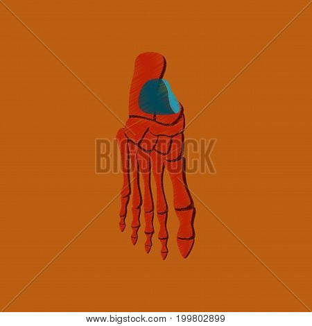 flat shading style icon foot skeleton anatomical