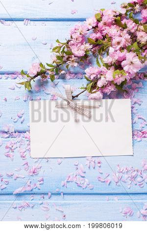 Pink sakura flowers and empty tag on blue wooden planks. Flat lay. Selective focus. Place for text.