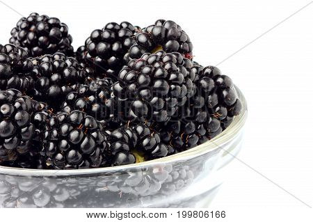 Closeup blackberries in a glass bowl. Isolated on a white background.