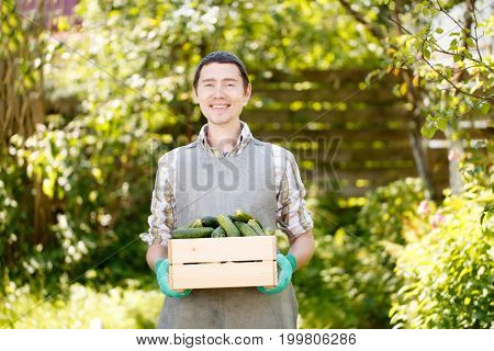 Brunet holding box with cucumbers