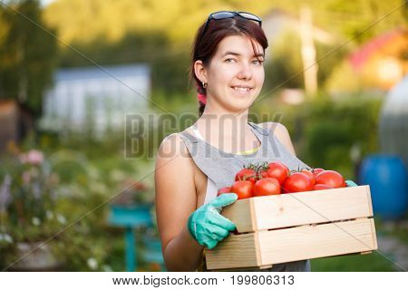 Picture of girl with tomatoes