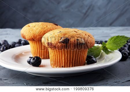 Freshly baked blueberry muffins with fresh blueberries