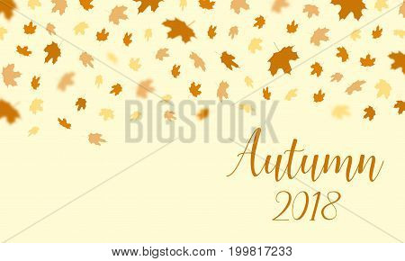 Autumn falling leaves pattern with text Autumn 2018 background. Vector autumnal foliage fall of maplefor autumn design