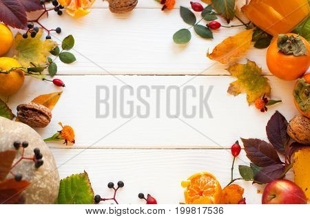 Frame From Vivid Colorful Autumn Leaves, Natural Seasonal Background On White Wooden Background, Top