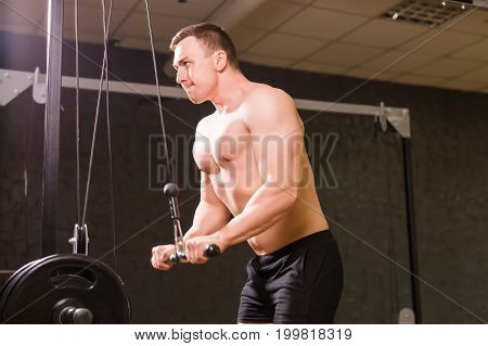 Handsome power athletic man on diet training pumping up muscles with sport equipment. Strong bodybuilder with six pack, perfect abs, shoulders, biceps, triceps and chest.