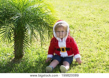 Boy sitting at palm tree in santa claus costume on green grass outdoors on sunny day on natural background. Christmas and new year. Winter holiday celebration concept. Child and childhood.