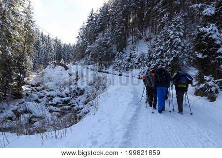 Group of people hiking on wintery snowy path in Stubai Alps mountains and small river Austria