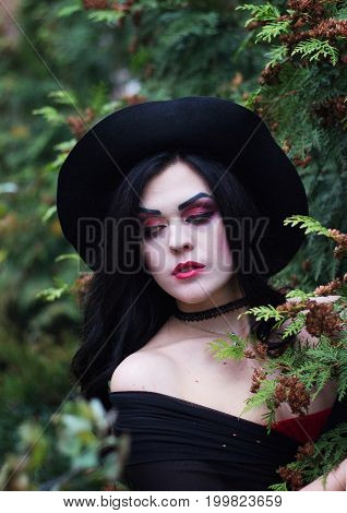 The Image Of A Witch For Halloween.