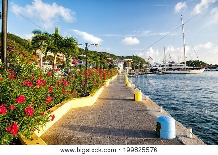 Sea side promenade with palms and blossoming flowers in France on sunny day on blue sky background. Tourist destination and summer vacation concept
