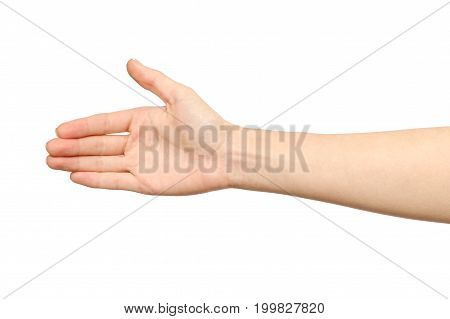 Woman's Hand Who Is Willing To Make A Deal
