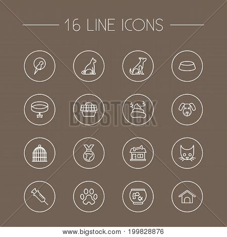 Collection Of Head, Cat, Caw And Other Elements.  Set Of 16 Animals Outline Icons Set.