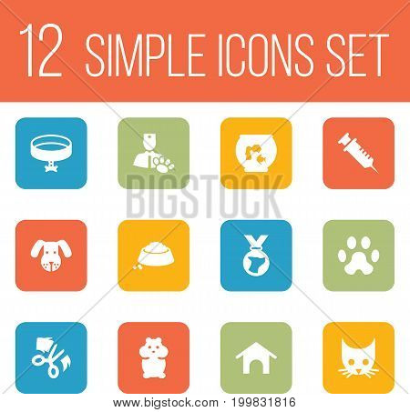 Collection Of Footprint, Food, Scissor And Other Elements.  Set Of 12 Animals Icons Set.