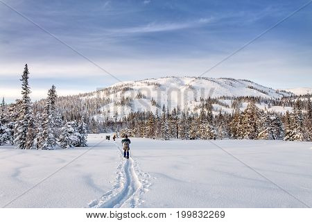 Group Of Young Skiers Backpackers In Snowy Mountains