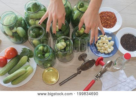 Preparation for pickling cucumbers. Preservation. cucumbers pickles