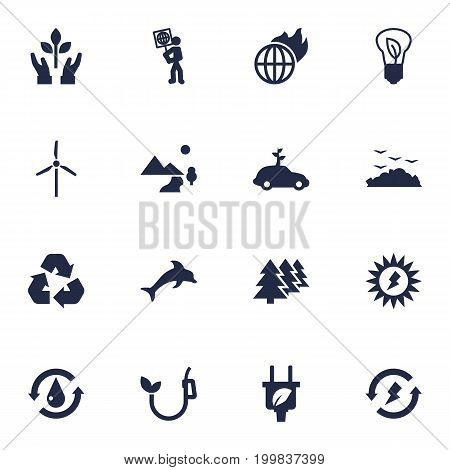 Collection Of Fish, Renewable, Reforestation And Other Elements.  Set Of 16 Bio Icons Set.