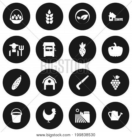 Collection Of Bailer, Container, Grower And Other Elements.  Set Of 16 Harvest Icons Set.